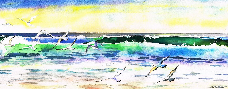 Mouettes dans les vagues